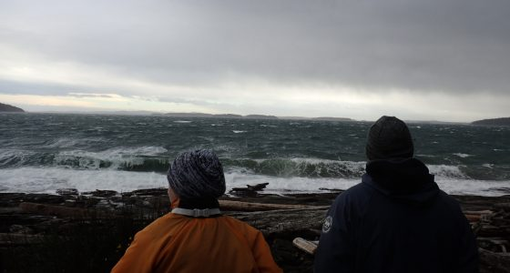 Students watching rough seas